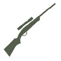 Air Guns